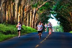 16 Fun Fall Marathons | Active.com- some of the Midwest I'd like to try
