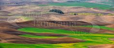 North American Landscape Panoramic Images, Photo Library, Golf Courses, Stock Photos, Landscape, World, American, Poster, Painting