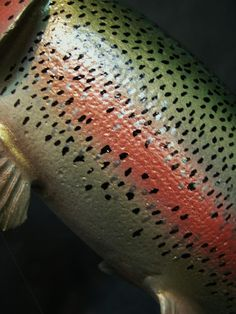 Fish Wood Carving, Wood Carvings, Lure Making, Rainbow Trout, Fish Art, Wood Art, Crochet Top, Woodworking, Taxidermy