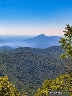 Hike the Appalachian Trail from Unicoi Gap to stunning summit views at Rocky Mountain