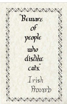 Beware of people who dislike cats.
