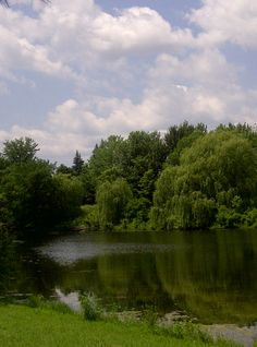 Parc Angrignon,Montréal River, Photos, Outdoor, Park, Outdoors, Pictures, Outdoor Games, The Great Outdoors, Rivers