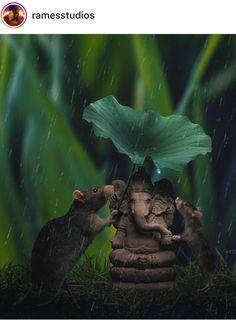 गणपती बाप्पा मोरया 💓post आवडल्यास नक्की फोल्लो करा💓 🔸ⓛⓘⓚⓔ ❤ 🔸️ⓒⓞⓜⓜⓔⓝⓣ 💬 🔸️ⓢⓗⓐⓡⓔ ♻️ 🔸️ⓕⓞⓛⓛⓞⓦ 😊 👿👍✌️🤘 🔹. Shri Ganesh Images, Ganesha Pictures, Lord Krishna Images, Lord Murugan Wallpapers, Lord Krishna Wallpapers, Baby Ganesha, Ganesha Art, Ganesh Bhagwan, Ganpati Bappa Wallpapers