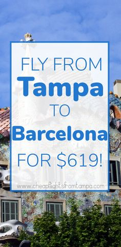 92 best cheap flights from tampa images cheap flights low fare rh pinterest com