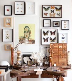 Jewler's bench + Framed Butterfly Collection