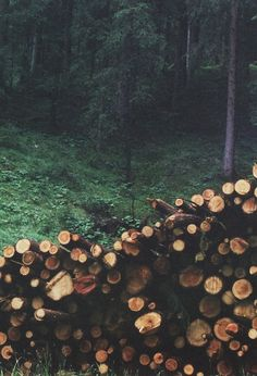 Nature life.