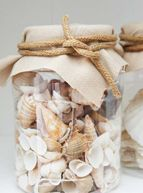 Seashells in the jar... could do this with an old spaghetti sauce jar!