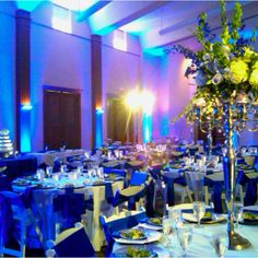 Illuminating Celebrations- wedding reception @ Witte Museum  Wedding Coordinated by Haute Weddings