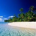 Miami Beach Tourism and Travel: 237 Things to Do in Miami Beach, FL   TripAdvisor