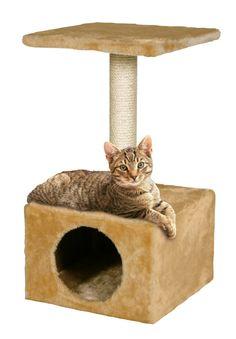 Rascador standard para Gatos plataforma y gatera                                                                                                                                                                                 Más