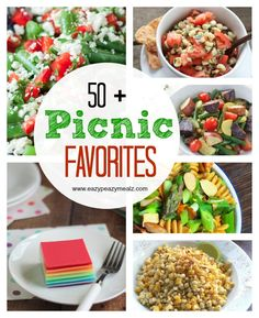 50 + Picnic Favorite Recipes to make your Summer Picnics tasty and fun! - Eazy Peazy Mealz