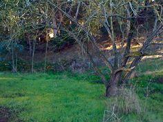 Bull Valley hiking trail