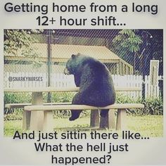 awwww. This used to be me back during my 12+ shifts. I got home and sat there for an hour just fixing my eyes on the t.v. Not even paying attention to what was going on.