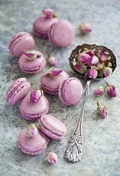 radiant orchid macarons