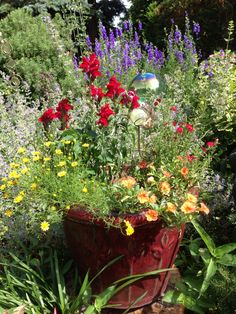 Beautiful container plants set among a larger garden bed!