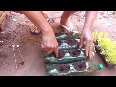 Como Fazer uma Horta com Garrafas Pet, passo a passo - YouTube