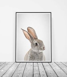 Woodland+Rabbit+Nursery+Peter+Rabbit+Nursery+by+LittleInkEmpire