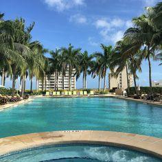 Four Seasons Miami Pool is glorious! #honeymoon #luxurytravel #bucketlist