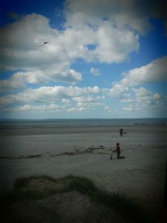 Lets go fly a kite! Dotty and Daddy West Wittering