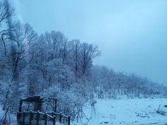 Early morning in winter in Korea. Serenity.