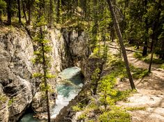 The Beauty Creek Hike to Stanley Falls in Jasper National Park