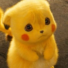 nooooo i hate seeing pikachu sad Pikachu Drawing, Pikachu Art, O Pokemon, Baby Animals Super Cute, Cute Little Animals, Cute Funny Animals, Cute Dogs, Happy Animals, Cute Pokemon Wallpaper