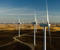 A lovely wind farm.