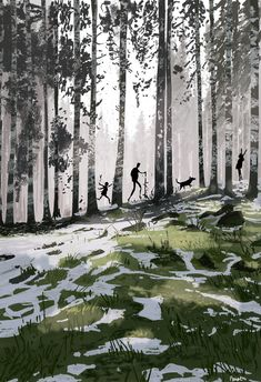 The big open We did a few hikes over the break.. makes me want to go lose myself in a forest for a few days! #pascalcampion