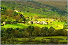 James Herriot Country Every hill and dale looks like this. So beautiful.