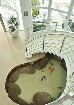 Tell Dad to build this koi pond