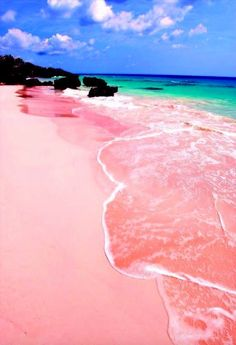 Pink Sands Beach in Harbour Island, Bahamas!
