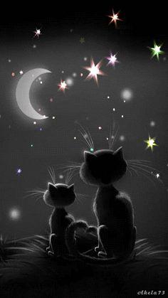 Bonne fin de journée, bon courage si tu as encore du boulot... je t'envoie plein d'étoiles et des