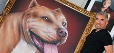SunLive - Dog Whisperer accepts portrait - The Bay's News First