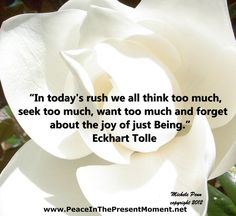 In today's rush we all think too much ~ seek too much ~ want too much ~ and forget about the Joy of Just Being ༺❁༻ Eckhart Tolle