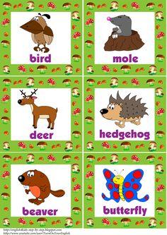 wild #animals flashcards with words