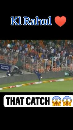 Star Sports Live Cricket, Cricket Sport, Super Funny Memes, Funny Jokes, Ipl Videos, Crickets Funny, Funny Cartoon Gifs, Cricket Videos, Ms Dhoni Photos