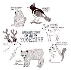 Animal cuteness