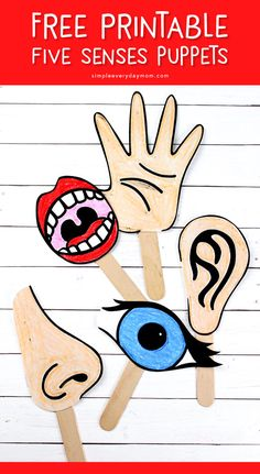 Free Printable 5 Senses Puppets | Kids can tell stories all about the five senses with these free printables.  #preschool #kindergarten #earlychildhood #kidsactivities #ideasforkids #teacher #freeprintable Preschool Kindergarten, Preschool Crafts, Early Childhood, Pre School, Puppets, Free Printables, Activities For Kids, Teacher, Ideas
