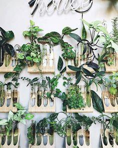 IKEA hacks - spice racks into plant racks