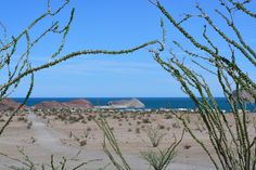 Gonzaga Bay at the Sea of Cortez, Baja California, Mexico. Baja California, Grand Canyon, Mexico, Sea, Mountains, Nature, Travel, Naturaleza, Viajes