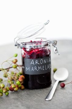 1000 images about aronia on pinterest berries aronia. Black Bedroom Furniture Sets. Home Design Ideas
