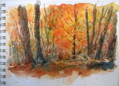 """Everyday Artist: Step-by-Step Watercolor Painting: """"Autumn Glow"""""""