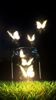 Fantasy Butterfly Jar Android Wallpaper