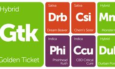 New Strains Alert: Phishhead Kush, Dream Beaver, Chem's Sister, Durban Berry, and More