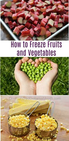 How to Freeze Fruits and Vegetables, Freezing Fruits and Vegetables
