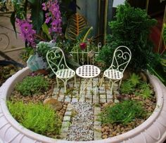 Fairy Garden Care | this entry was posted in container gardening garden review by