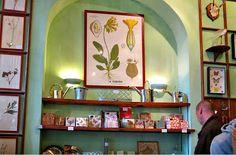 Inspiration Deyrolle en bas a droite pour revetement mur: Baguettes plus plaques bois