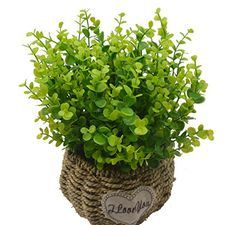Gentil Fake Plants, Plants Indoor, Artificial Plants, Garden Office, Greenery,  Wedding Decor, Faux Plants, Indoor House Plants, Marriage Decoration