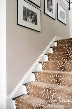 Muse Interiors - Portfolio - DETAILS......for a back stairs