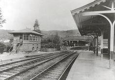 Jaraguá, na língua Tupi significa Gruta do Senhor, Guarda do Vale ou Senhor dos Vales. Abriga, além do pico, a estação de trem do Jaraguá ...